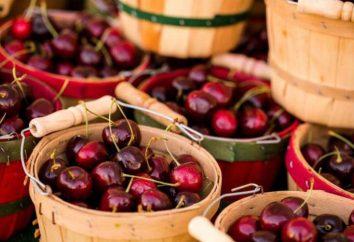 Riesgos y beneficios de las cerezas. Propiedades medicinales de bayas de verano