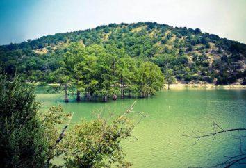 Lago Sukko (Anapa) – ciprestes no Território Krasnodar