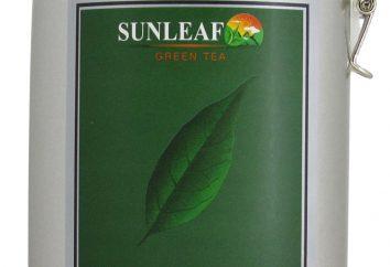 5 razões para amar o chá verde