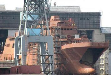 """""""Ivan Gren"""" – o grande navio anfíbio russo Projeto 11711"""