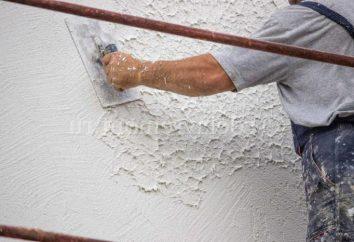 """Di stucco di cemento """"basi"""": caratteristiche, tipologie e feedback"""