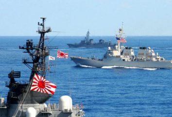 Giappone Navy: informazioni di carattere generale