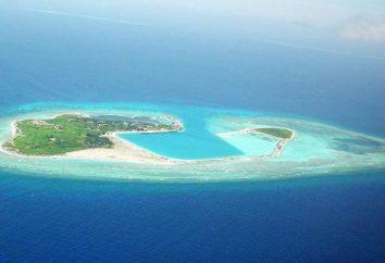 Paracel-Inseln sind berühmt für das, was? Foto