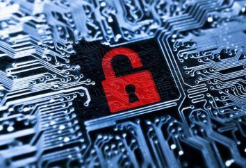 IDS – quel est-il? Système de détection d'intrusion (IDS) comme une œuvre?