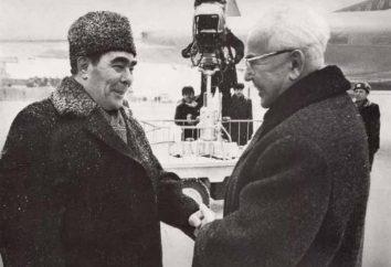 In welchem Jahr ist gestorben Breschnew? Als er war ein Mann?