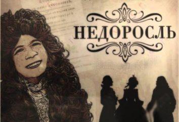 Le problème de l'éducation et de l'éducation dans la comédie « Le mineur » D. I. Fonvizina