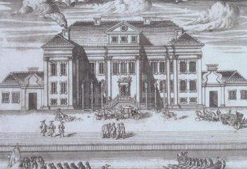 Pałac Zimowy w Petersburgu: opis, historia