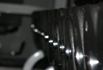Gino – O que é a musculação?