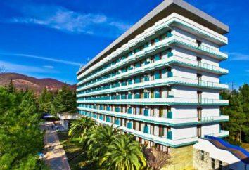 Adler, Resorts am Meer Essen: eine Beschreibung, eine Liste der besten Bewertungen