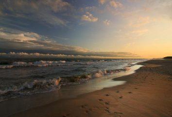 Jaka jest temperatura wody w Morzu Bałtyckim?