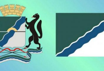 Le drapeau et les armoiries de Novosibirsk