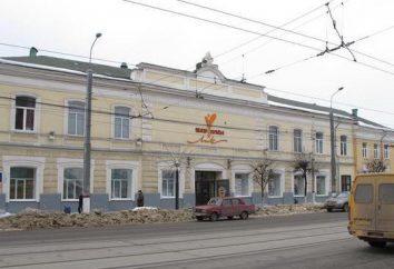 Puppet Theatre (Tula) invita i giovani spettatori