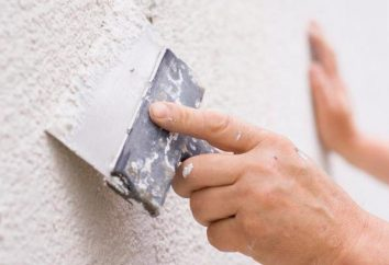 Tipos de masilla de paredes