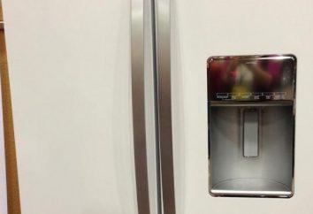 ¿Cuál es la buena refrigerador: entendemos