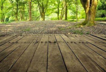 piso de madeira no país com suas próprias mãos