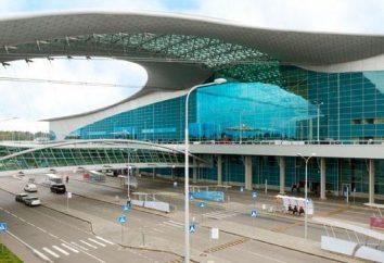 aeroporto Mosca Sheremetyevo: schema aeroporto, piano di terminale e altre informazioni utili