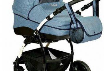 """Cadeira de rodas """"Indigo"""" 2 em 1: comentários, características, preços"""