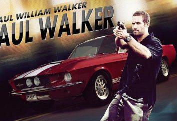 """Gli attori del film """"Fast and Furious 7"""", o il modo di fare cinema senza Paul Walker"""