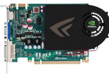 Karta graficzna GeForce GT 440: idealne rozwiązanie dla entry-level do gier PC