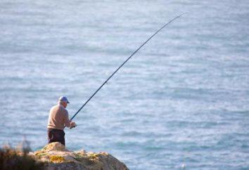 Buen gancho de pesca – la clave para la pesca con éxito