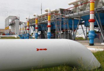 L'utilisation du gaz naturel. Gaz naturel: composition, propriétés