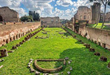 Come funziona il Palatino a Roma: foto