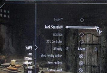 """Come in """"Skyrim"""" per cambiare la lingua. Provare a utilizzare la console!"""