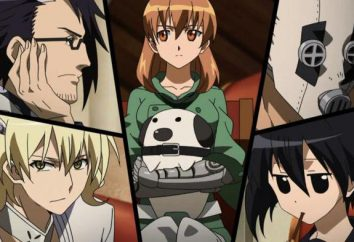 Anime Akame ga uccisioni: personaggi e la storia