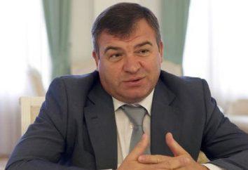 AE Serdyukov: biografía del ex ministro de Defensa