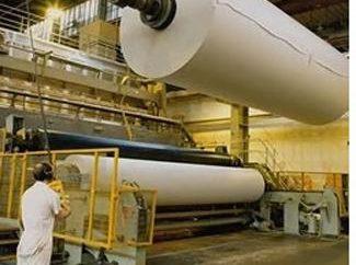 Industria della pasta e della carta come un settore dell'economia