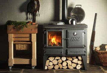 Jak właściwie spalić drewno przy użyciu drewna opałowego: krok po kroku opis, zalecenia i opinie