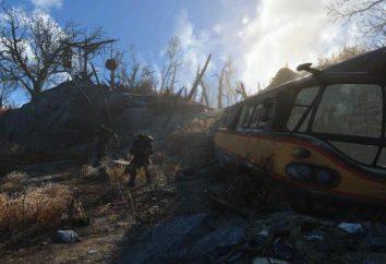Gra Fallout 4 ustawienia graficzne: krok po kroku i zalecenia