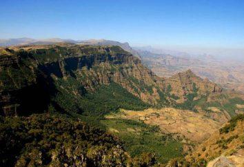 hauts plateaux éthiopiens et plateau Somalie. hauts plateaux éthiopiens où?