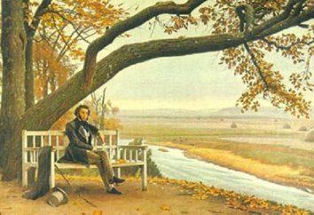 Główne motywy liryczny Puszkina. Tematy i motywy z tekstami Puszkina