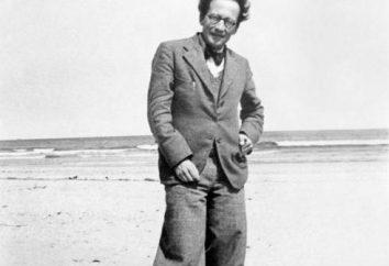 Shredinger Ervin: curiosità, biografia, scoperta, foto, citazioni. gatto di Schrödinger