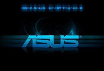 Asus K95VB: opinie i funkcje