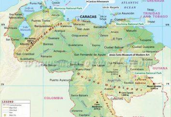 Wenezuelskiej gospodarki: przegląd i rozwój