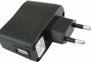 Universal-Ladegerät Netz: Übersicht, Merkmale, und Nennleistungen. USB-Ladegerät