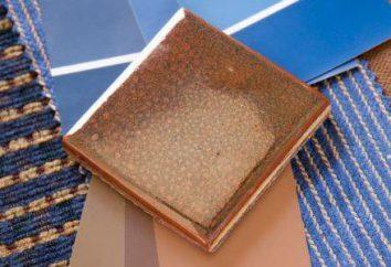 Que tipos de azulejos existem? Azulejos cerâmicos: características, tipos. Azulejos de calçada: tipos e tamanhos. Tipos de revestimentos