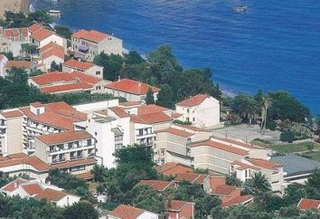 "Hoteles populares en Montenegro. Hotel Petrovac ""Villa Oliva"""