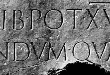 """""""Lapidarium"""" – co to jest i dlaczego tak się nazywa?"""