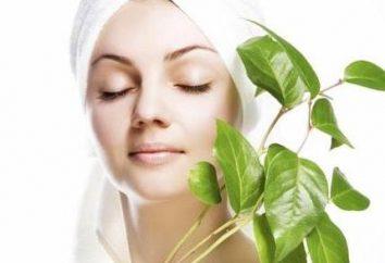 olio di canfora terapeutico per i capelli