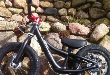 bicicleta de los niños a partir de 4 años para el niño: una revisión de los modelos, descripciones, los fabricantes y comentarios