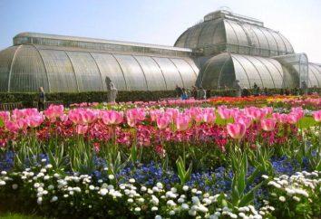 Jak dotrzeć do Kew Gardens? Opis i zdjęcie