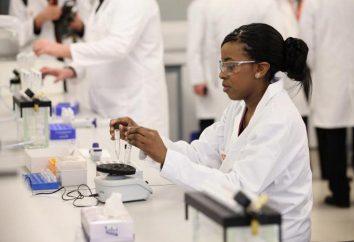 Podstawowa nauka – co to jest? Badania stosowane w nauce
