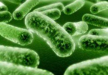 Tężec – co to jest? Przyczyny, objawy i sposoby leczenia choroby
