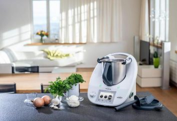 Thermomix – ¿qué es? Thermomix: opiniones
