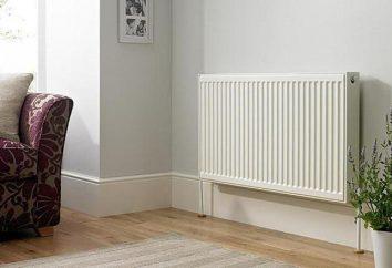 radiatori pannello. Come scegliere i radiatori per il riscaldamento domestico