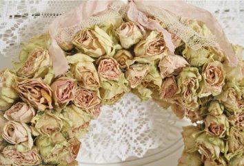 Jakie kwiaty dać ślub dla nowożeńców? Bukiet róż białych. Jakie kwiaty nie można otrzymać na weselu nowożeńcom?