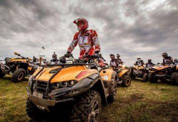 RM 500 ATVs für Arbeit, Freizeit, Sport